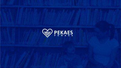 PEKAES z Kulczyk Foundation wyremontują biblioteki