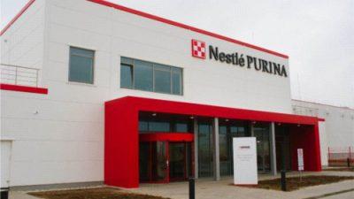 Nestlé zwiększy zatrudnienie w fabryce karmy