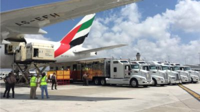Emirates SkyCargo przewiozły blisko 100 koni przez trzy kontynenty