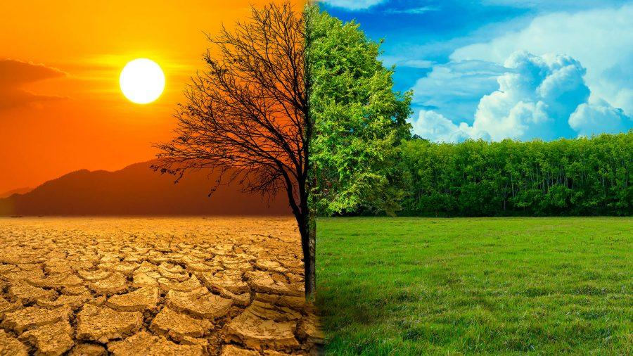 Zmiana klimatu – efekty wyzerowania emisji CO2