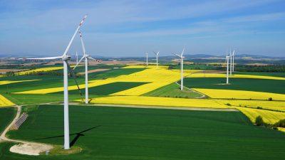 Jeszcze więcej zielonej energii w Prologis