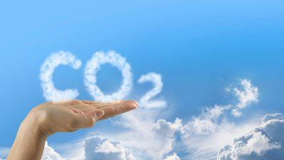 Kompensacja emisji CO2 dla klientów flotowych